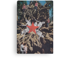 ' Red Star ' Canvas Print