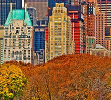 Central Park South ~ New York City ~ USA by Sabine Jacobs