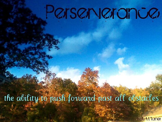 Perserverance by Kelly Turner