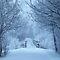 Winter Blues- December voucher Challenge