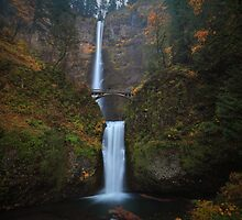 Multnomah Falls I by Tula Top