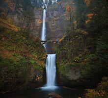 Multnomah Falls I by Tula Top