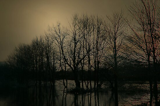 THE SILENCE OF THE FLOODS by leonie7