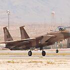 WA AF 80-0024 F-15C Eagle Landing by Henry Plumley