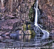 Nigretta Falls in Slow Motion by Sarah Donoghue