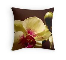 ORCHID - phalaenopsis II   ^ Throw Pillow