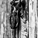 Nifty Fifty Lock by Aggpup