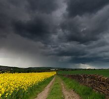 Edge of the storm by johnfinney