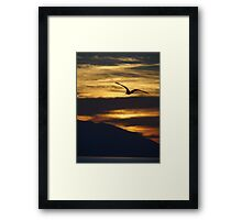 The night is coming the birds are going - La noche viene los pajaros regresan a sus lugares  Framed Print