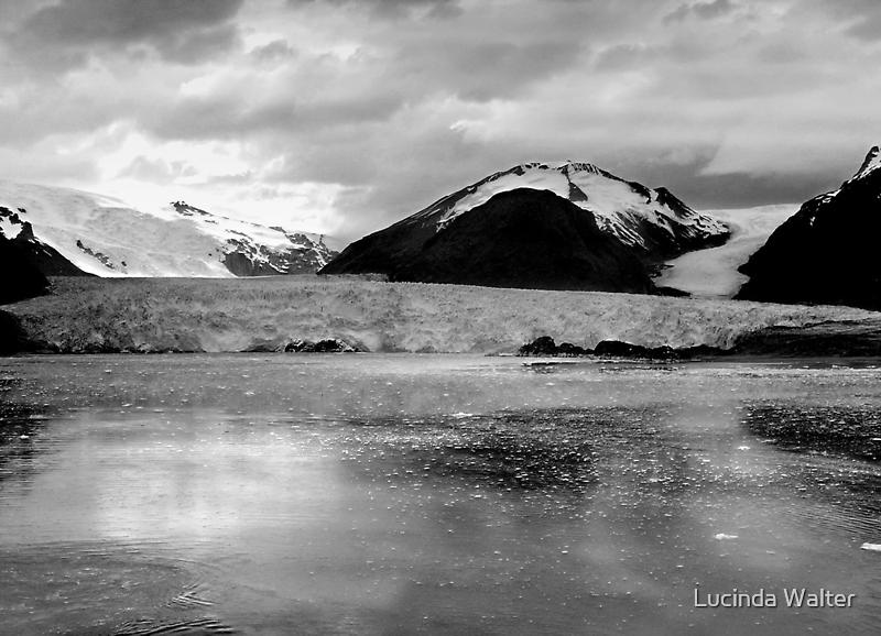Amalia Glacier, Chile ~ Black & White by Lucinda Walter