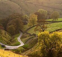 Coldwell Clough by johnfinney