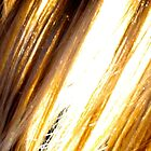 Golden Strands by addipaddi