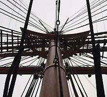 Masts of Discovery by kalaryder