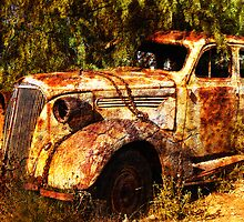 Rust Bucket by Wendi Donaldson