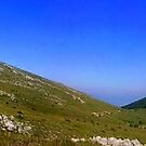 Mountain Galicica- panorama by Kristina R.