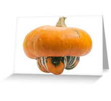 Orange pumpkin isolated on white background. Greeting Card