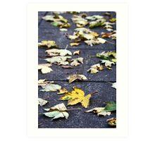 Yellow leaf, London 2010 Art Print