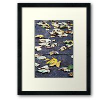 Yellow leaf, London 2010 Framed Print