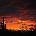 Arizona Sunset by levipie