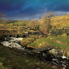 Pack Horse Bridge at Crummackdale in the Yorkshire Dales by SteveFinch