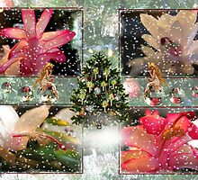 Christmas Cactus ~Merry Christmas by Greta  McLaughlin