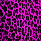 Purple Leopard Print  by brattigrl