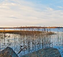 Worden's Pond - Series - NWb - Southern Rhode Island by Jack McCabe