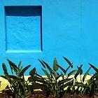 Blue Niche by Akrotiri