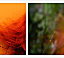 orange fusion by ptica