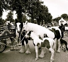 Travellers Way (Appleby Horse Fair) by Lou Wilson
