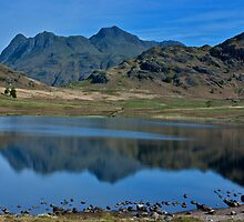 Towards the Langdale Fells by Trevor Kersley