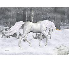 Frost .. the Winter Unicorn Photographic Print