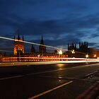 The Houses of Parliament by garykingphoto