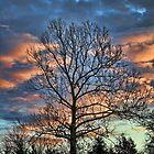 Sunrise Hill by Carolyn  Fletcher