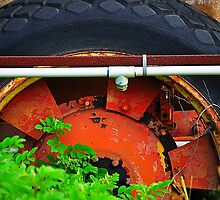 Old Tire  by joevoz