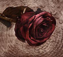 loveletter by lucyliu