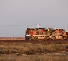 BHP Train by stevebrooks
