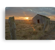 Shack on the Fence Line Canvas Print