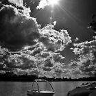 Sunshine over Condamine by Tracie Louise