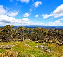 view from Mount Macedon by Simon Penrose