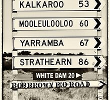 60 km to Mooleulooloo!! by Wendi Donaldson