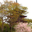 Oka-dera temple, pagoda by Tomoe Nakamura