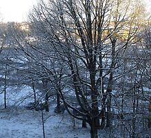 First Snow Morning in Växjö by izotopo