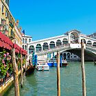 Rialto Bridge - Venice by davefozz