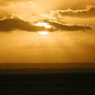 Goden sunset kangaroo Island by tunna
