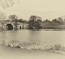 Blenheim Palace by Asif Patel