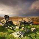 Heckwood Tor - Dartmoor National Park by garykingphoto