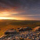 Rippon Tor - Dartmoor National Park by garykingphoto