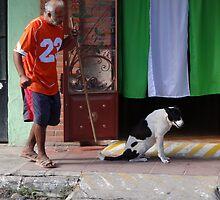 Old man and the dog - Señor viejo y el perro by Bernhard Matejka
