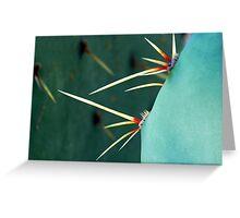 Cactus Macro Greeting Card